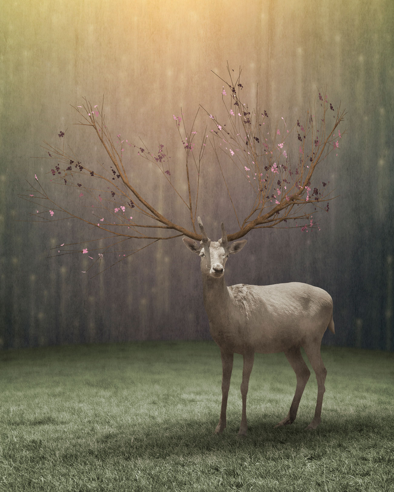 Surreal Composite by Greg Noblin