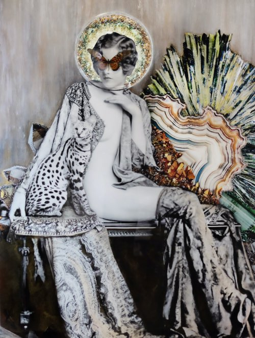 """Amy Rader – """"African Swallowtail"""""""